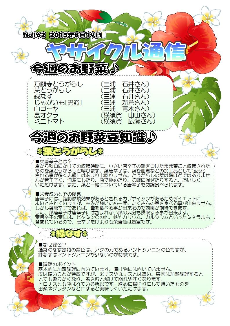 ヤサイクル通信 No.162