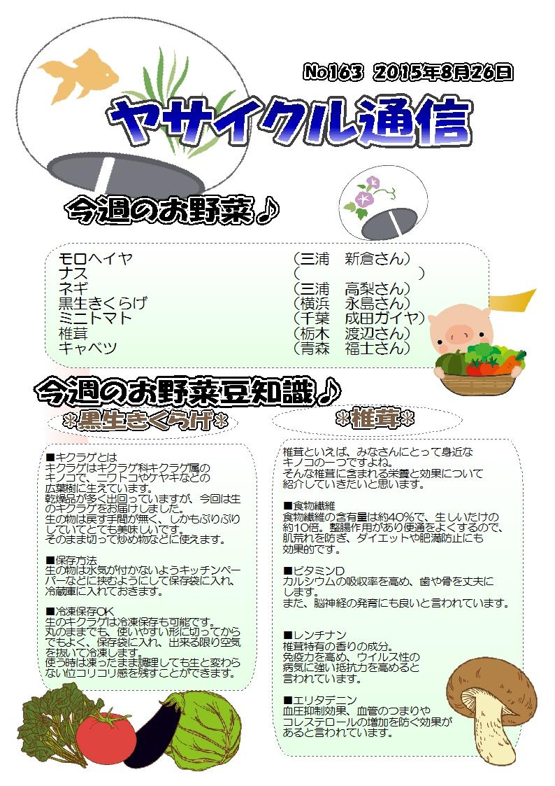 ヤサイクル通信 No.163