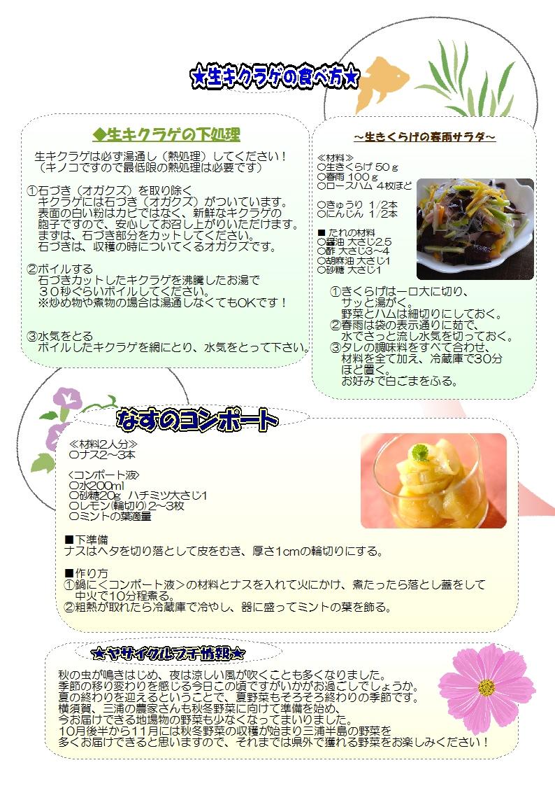 ヤサイクル通信No.137